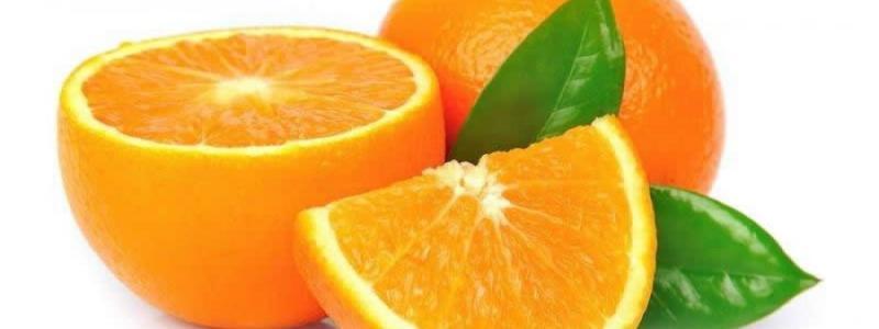 Narancs - A citrusfélék királynője - Infrasalon: Exluzív..